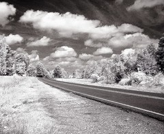 Texas Road (Whatknot) Tags: texas road infrared experiment tx75 roadtrip whatknot p119 r72
