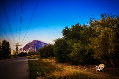 Mortality (Melissa Maples) Tags: antalya turkey trkiye asia  apple iphone iphone6 cameraphone chair street road tnektepe mountain blue morning summer
