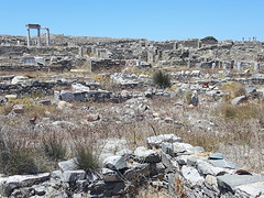 20160714_125758_low (Cinzia, aka microtip) Tags: delos cicladi grecia archeology antichit archaelogy island unescoworldheritagesite mithology sanctuary ancientgreece