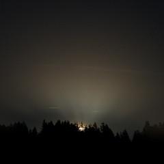 full moon rising (Ben McLeod) Tags: coast fullmoon moon moonrise stars trees