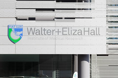 Walter and Eliza Hall Institute_Series (melbournian1) Tags: australia cityofmelbourne fiatlux lettherebelight melbourne ohm2016 openhousemelbourne royalmelbournehospital theuniversityofmelbourne victoria wehi walterandelizahallinstitute walterandelizahallinstituteofmedicalresearch day polymu
