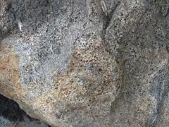 Strzelin open air geology exhibition (nesihonsu) Tags: geology geologia geologiapolski wzgrzastrzeliskie strzelin poland polska przedgrzesudeckie przyrodapolska lowersilesia dolnolskie dolnylsk rocks