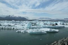 Jokulsrln_2181 (leoval283) Tags: ijsland iceland jokulsrln glacierlagoon ijs gletsjer