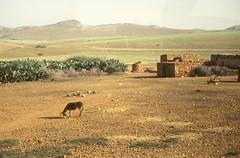 Regards sur le Maroc (maxguitare1) Tags: maroc paysage landscape paesaggio paisaje