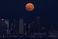 Harvest Moon over San Diego (chase.bartholomew) Tags: moon fullmoon harvestmoon bloodmoon eclipse sandiego pointloma