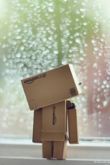 Dreaming of Beautiful Rain (Victoria Armstrong) Tags: rain spring soft bokeh dreaming danny softlight danbo springshower 50mmf18ii revoltech danboard canoneos1000d victoriaarmstrong