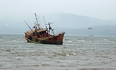 Ship Grounded (Sergey Dubrovskiy) Tags: sea mist island ship russia crash rusty damaged obsolete ruined kunashir kurils
