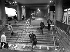 Early Morning Commuting (.hd.) Tags: street station bahnhof commuting stgallen commuters pendler pendeln