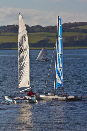 Yachts, Largs Marina