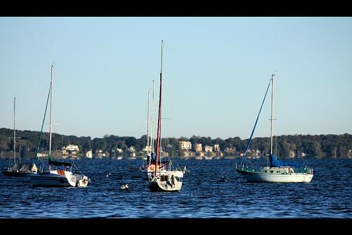 blue lake water wisconsin sailboat madison universityofwisconsin lakemendota sigma70300apomacro