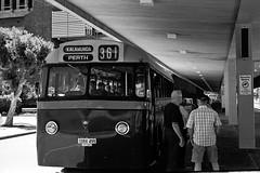 Day in a Roll 03 ( monkeys with cameras (AKA Marx)) Tags: bus era 17 kalamunda