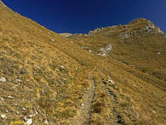 024 - last meters to Fussy pass (TFRARUG) Tags: mountain lake alps cross hike aosta ibex avic dondena