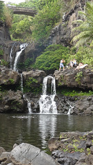 DSC09263 (toddity) Tags: hawaii rocks maui pools waterfalls roadtohana oheogulch