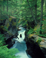 Avalanche Creek Waterfall