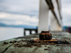 rusty bolt (atogdude) Tags: bridge sea macro bay dof olympus wellington zuiko seatoun lightroom e520 magnificentcreation atogdude