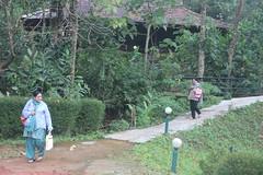 084 (balagopalmohan) Tags: rain country wyanad
