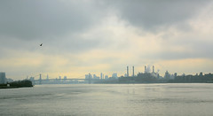 EAST RIVER looking south (Joey Angerone) Tags: newyorkcity landscape eastriver williamsburgbridge