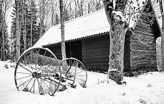 Winter wheels (daniel.gogberg) Tags: winter bw snow tree mono vinter sweden sony wheels sverige träd sn nex7 sonynex7