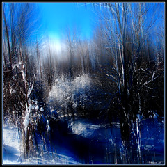 Winter Blue (Tim Noonan) Tags: blue trees winter light white snow black colour texture clouds digital photoshop dark landscape frozen stream shadows branches icicle shining highlight mosca 20c hypothetical easternontario vividimagination artdigital greenscene shockofthenew newreality sharingart maxfudge awardtree maxfudgeawardandexcellencegroup magicunicornverybest magicunicornmasterpiece magiktroll exoticimage digitalartscene netartii donnasmagicalpix vigilantphotographersunite