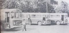 Pegaso 5022 en el paradero de Arimao. Rutas 43 y 61 (Adrian (Guaguas de Cuba)) Tags:
