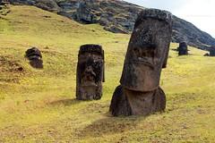 RANO RARAKU   ISLA DE PASCUA (Pablo C.M    BANCOIMAGENES.CL) Tags: chile moai easterisland rapanui polinesia isladepascua ranoraraku oceana