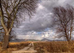 A road to fields (giorgosgrigoriadis16) Tags: nature canon landscape hellas greece fields drama  mountainslandscape dhrama greeklandscape canonnature dramascenes  canonlandscape canongreece canonpowershotg10 powershotg10 perithori dramalandscapes canoncloudsandsky cloudsanssky eastmakedonia canongreekscene canonatmosphere katonevrokopi