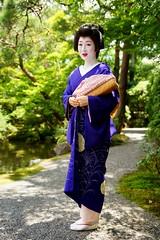 -5 (nobuflickr) Tags: 20160718dsc04319   fukuteru    maiko  geiko   kyoto japan miyagawachou