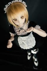 Saber Alter Maid Ver (kaili_tang) Tags: saber alter dollfiedream