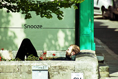 Snooze (2of365) (Reckless Times) Tags: snooze sleep rest green type sun summer lomo nikond750 300mm oxford oxforduniversity ligh shade light