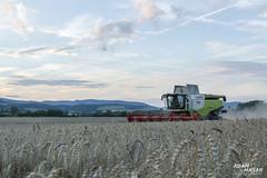 CLAAS LEXION 740 (Adam Masr) Tags: slovensko treniansky kraj wheat harvest combine harvester claas lexion 740 vario 900 powerfull sky clouds summer agriculture field season havest 2016 nikon d3200 working farm