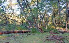Lot 33 Egans Road, Nelligen NSW