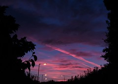 Dawn today (Steve-h) Tags: nature dawn sunrise newday colours colour black silhouettes pink clouds contrails blue sky trees hedge dublin ireland europe streetlights apple iphone 6s steveh day autumn fall lightroommobile