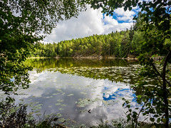 Lakeview (Jens Haggren) Tags: olympus em1 lake forestlake water reflections sky clouds trees green nature waterlily landscape nacka sweden
