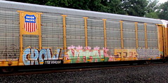 crow - vital - seer - beers (timetomakethepasta) Tags: crow vital seer beers ese ra freight train graffiti union pacific autorack up