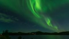 Aurora borealis (JH') Tags: nikon nikond5300 nature northernlights d5300 summer sky sigma sweden 1020 highcoast heaven landscape water trees stars borealis auroraborealis aurora 2016 exposure tree clouds