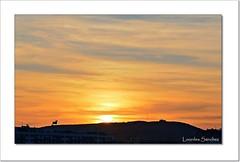 El toro y el sol (Lourdes S.C.) Tags: nubes cielo sol puestadesol contraluz toro atardecer
