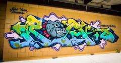 Bulldogs Rock (Viv Lynch) Tags: graffiti toronto eastyork graf paint streetart stanwadlow skatepark eyskatepark summer 2016 canada ontario ey park baseball osf unc eastyorkskatepark