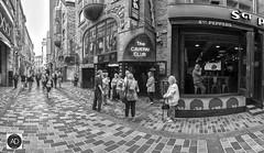 Not a scream left in them. (alun.disley@ntlworld.com) Tags: matthewstreet liverpool thebeatles people popmusic buildings streetscene music shrine citycenter panorama streetphotography blackandwhite mono