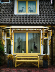 zijn jullie boven ? Ja kom maar . (roberke) Tags: huis house vensters windows geel yellow zitbank beelden statue birds vogel outdoor texel waddeneiland nederland netherlands decocksdorp