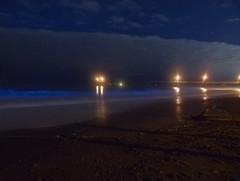 Bioluminescent Plankton, Pacifica (insilium) Tags: olympus pacifica plankton algea redtide dinoflagellates thomasmutzek unicellularalgae
