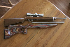 Ruger 10/22 Modification (BK2Bennett) Tags: rifle 1022 ruger