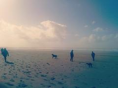 Beach (YellowBecky) Tags: ocean blue sea sky people sun beach dogs clouds sand day footprints