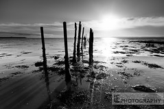 Sticks, stones, shadows and bones (Lewis Fackrell) Tags: morning sea england sun seaweed reflection wet water silhouette southwales wales clouds sticks shadows bright ripple estuary severn burst groyne goldcliff