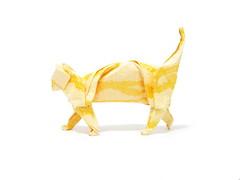 Cat (Al3bbasi.) Tags: animal cat paper origami al3bbasi
