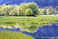 National Scenic Area (Gary Grossman) Tags: autumn reflection oregon landscape scenic dramatic columbia gorge pastoral columbiarivergorge autumncolor nationalscenicarea garygrossman