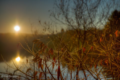 First HDR shot this morning... (guysamsonphoto) Tags: autumn fall sunrise automne river rivière hdr leverdesoleil nikond600 rivièreduquébec rivièrenicolet guysamson nikkor2485ged