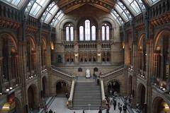 Museo de ciencia natural. Londres (Ml) Tags: light londres museo historia museodeciencianatural