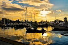 Bienne-le port au lever du jour (jd.echenard) Tags: sunrise fishingboat pcheur barque biel fischerboot bielbienne bienne mfcc bielersee leverdujour seeland bteaux lacdebienne cantondeberne paysagesuisse switzerlandlandscape portdebienne schweizerlandschaft cithorlogre lakeofbienne villedelavenir mygearandme rememberthatmomentlevel1 bienneharbor