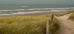 20121031-_DSC1148.jpg (Jan de Graaf) Tags: nature nikon natuur landschap infocus highquality d5000 noordhollandsduinreservaat nikond5000 jandegraaf jdegraaf