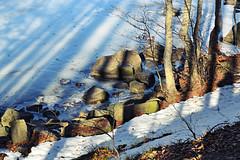 ... (Giulia van Pelt) Tags: trees winter italy white mountain lake snow ice nature alberi lago frozen rocks italia shadows riva stones natura ombre shore neve sassi rocce inverno montagna bianco santo emiliaromagna appenninotoscoemiliano ghiaccio ghiacciato